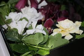 High Camp Gardenias by Oprah U0027s Favorite Things Last Nights Look