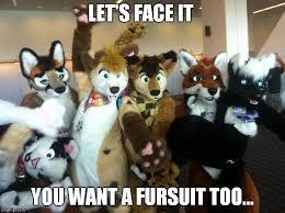 Furry Meme - furries meme generator imgflip