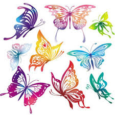 colourful butterflies vector freevectors