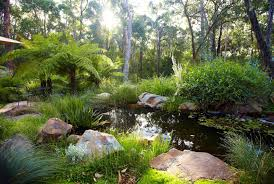 phillip johnson landscapes national water week