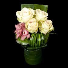 cymbidium orchid roses and cymbidium orchid blossoms kan