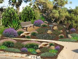 low water landscaping park u2014 home ideas collection low water