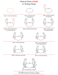 how to draw a crab art w kids pinterest drawings
