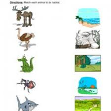 animal habitats worksheet matching 2