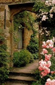 234 best climbing roses images on pinterest climbing roses