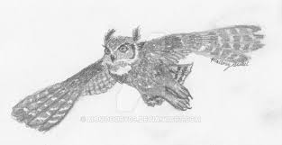 great horned owl sketch by momodory09 on deviantart