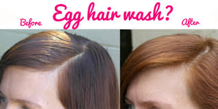 Wash Hair Before Coloring - how to make egg hair wash