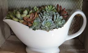 garden nice white ceramic teapot shape succulents containers for