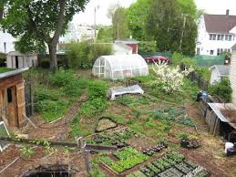 Sample Of A Fully Permaculture Design With Exact Placement Of - Backyard permaculture design