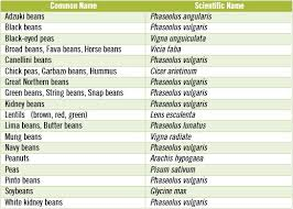 beans and legumes do they adhere to paleo dr loren cordain