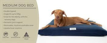 Medium Sized Dog Beds Henry Hottie Australia U0027s Favourite Pet Bed