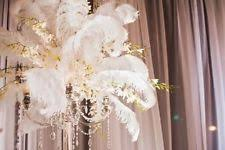 Tower Vases For Centerpieces Ostrich Feather Centerpieces Ebay