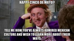 Cinco De Mayo Meme - 5 de mayo facts memes norma ibarra lapir0 portfolio