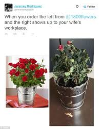 i800 flowers buying flowers don t get duped find a real florist amiba