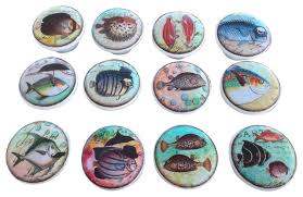 Beach Themed Cabinet Knobs by Whimsical Fish Cabinet Knobs 12 Piece Set Beach Style Cabinet