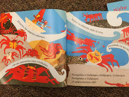take a fun journey to the galapagos islands in spanish class