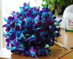 Blue Orchid Flower Wedding Flowers Wedding Blue And Purple Flowers