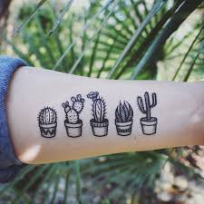 potted cactus temporary tattoos succulent house plants black line
