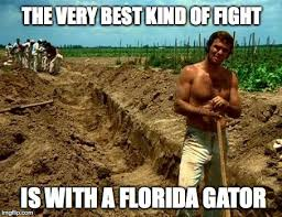 Florida Gator Memes - the very best kind of fight imgflip