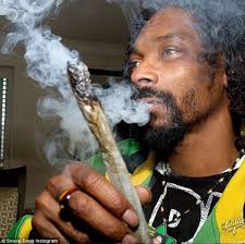 Snoop Meme - create meme snoop dogg snoop dogg snoop dogg snoop lion