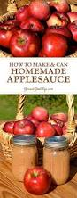 homemade applesauce for canning