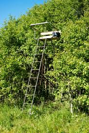 Best Hunting Ground Blinds Tree Stand Vs Ground Blind What Is The Best Option For You