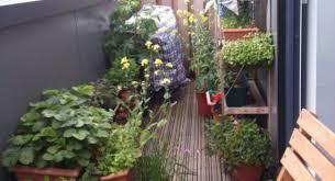 small balcony garden design ideas 1000 ideas about balcony garden