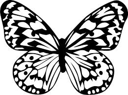 butterflies coloring lovers