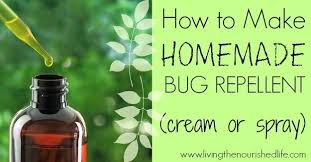 14 natural homemade mosquito repellents that absolutely work
