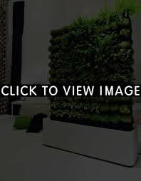 herb gardens indoor home outdoor decoration
