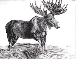 suggestions online images of simple moose head outline