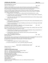 Sample Resume For Insurance Agent by Insurance Resume Examples Resume Example Insurance Executive