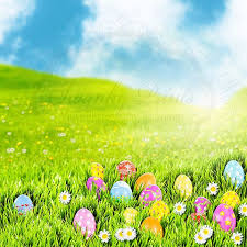 easter backdrops 14 best easter backdrops images on photography