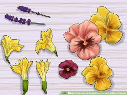 flowers edible 3 ways to decorate baked goods with edible flowers wikihow