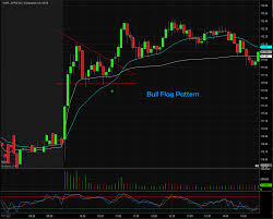 Bull Flag Warrior Trading Blog Trading With Edge Know Your Patterns