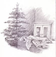 christmas tree sketches christmas trees 2017 christmas tree shop