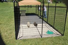 Dog Kennel Flooring Outside by Ultimate Dog Kennel