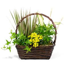 reno florists reno sparks flowers sparks florist your personal florist