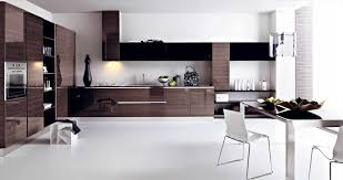 Home Decor Kitchen Cabinets Family Cabinets U Home Design Decor Middle Simple Modern Kitchen