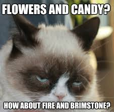 Grumpy Cat Meme Valentines Day - warning vday humor post proceed with caution or not whatever
