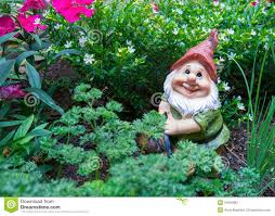 Garden Nome by Gnome In Garden Stock Image Image 34943861