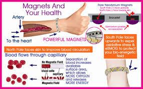 bracelet health magnetic images Titanium energy bracelets png