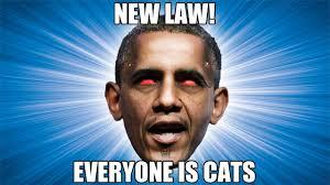 Evil Memes - the most unpopularist internet meme evil obama evil romney