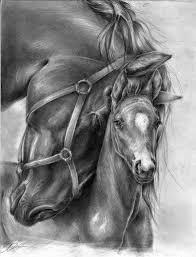 znalezione obrazy dla zapytania black horse dibujos y pinturas