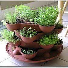 Herb Container Garden - garden design garden design with herb container gardens pots