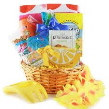 summer gift basket summer sensation summer gift basket kapo trading