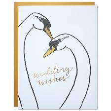 wedding wishes png wishes card parrott design studio
