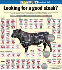 What Are The Best Sheets Best 25 The Butchery Ideas On Pinterest Cuts Of Beef Cuts Of