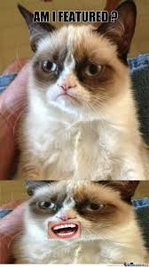 Grumpy Cat Meme Happy - even grumpy cat is happy when he s featured by imfeaturedbiatch