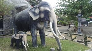file an elephant statue in dambulla jpg wikimedia commons